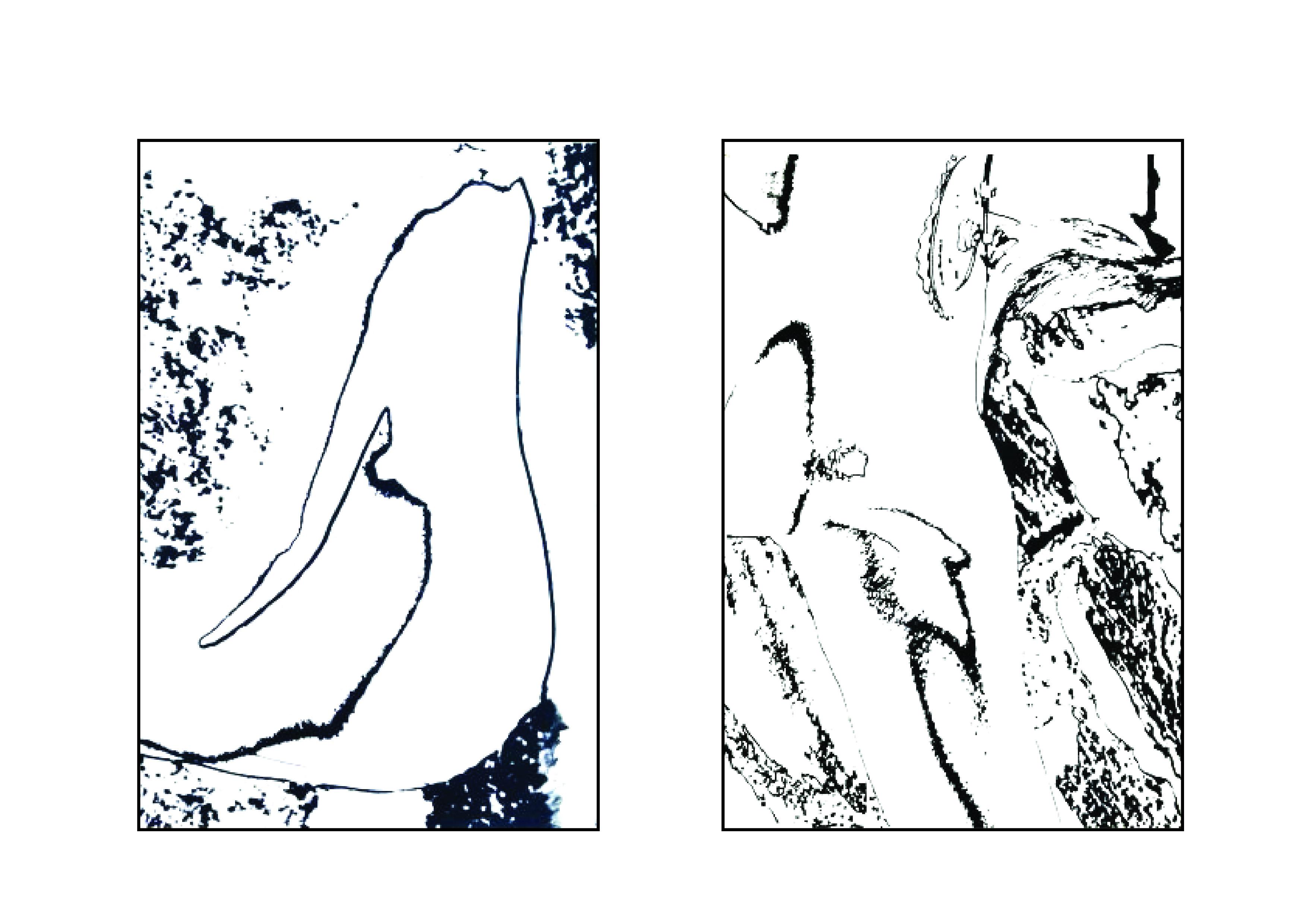 Pobierz/Otwórz pdf - Barwne partytury - projekt Magdalena Sawicka rys.1