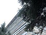 fot. Irena Kalicka5