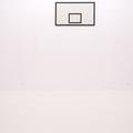 Rafał Jakubowicz, ti tabu dibu daj, 2007, instalacja: obraz olejny (105 × 180 cm), betonowy odlew piłki (obwód 75 cm, średnica 23,86 cm)69
