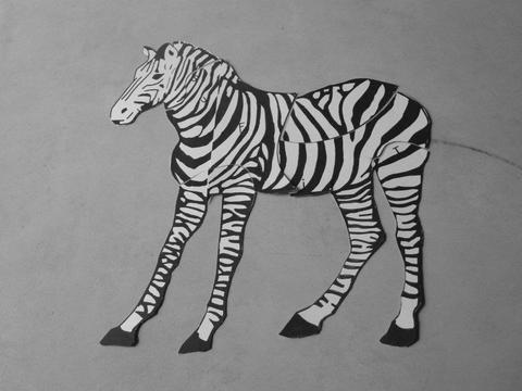 //A Zebra in the Museum//, photo: Emilia Pawłusz