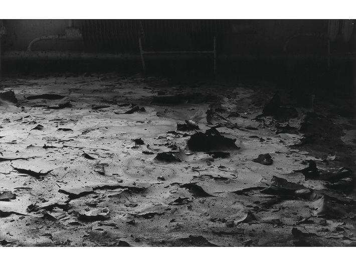 Mikołaj Smoczyński, //The Secret Performance II (Fields of Transition)//, 1992–1993, photograph
