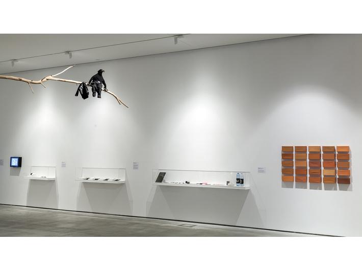 Wystawa Kolekcji MOCAK-u, Muzeum Sztuki Współczesnej w Krakowie MOCAK-u