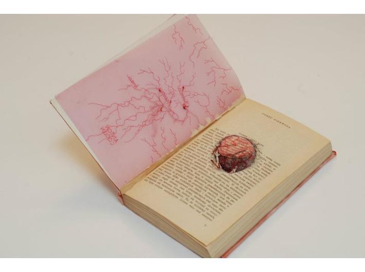 Książka artystyczna Agaty Kus
