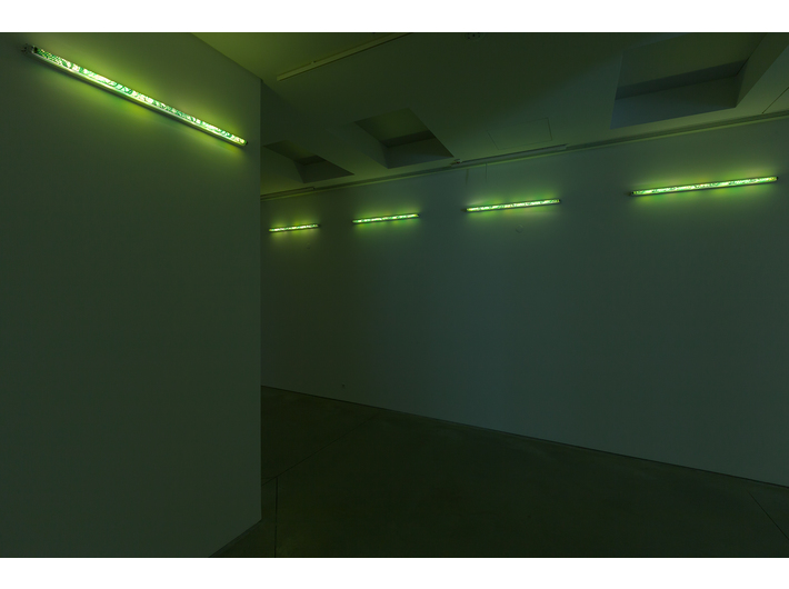 Karolina Kowalska, //Neon Light Shades//, 2005, installation