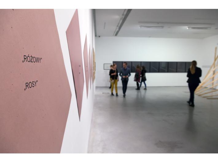 Wystawa Jarosława Kozłowskiego, Muzeum Sztuki Współczesnej w Krakowie MOCAK, fot. Rafał Sosin