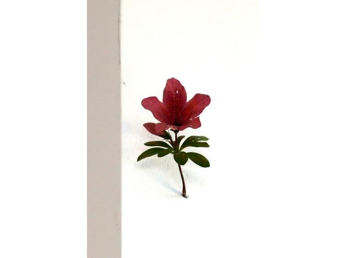 Yoshihiro Suda, //Azalia//, 2008, drewno polichromowane, Kolekcja MOCAK-u