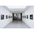 Wystawa Susan Lipper //Grapevine: 1988–1992//, fot. R. Sosin