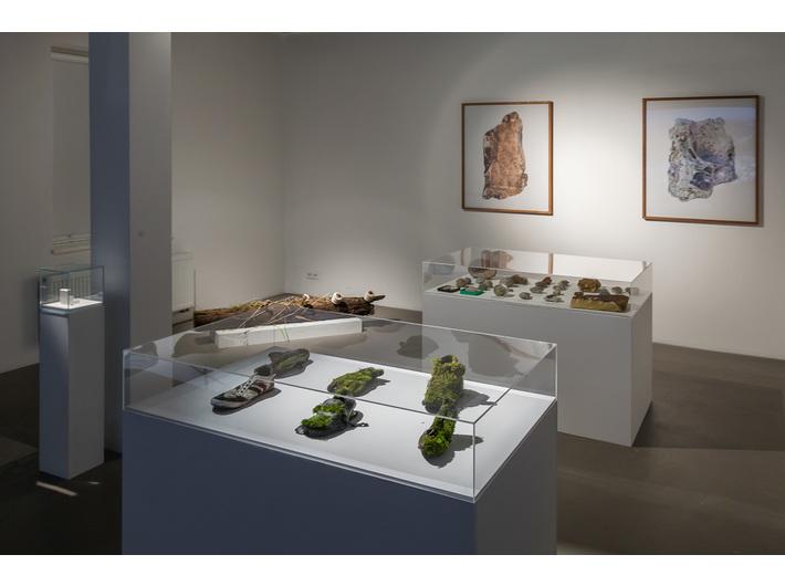 Wystawa Diany Lelonek //Liban i Płaszów – nowa archeologia//, fot. Rafał Sosin
