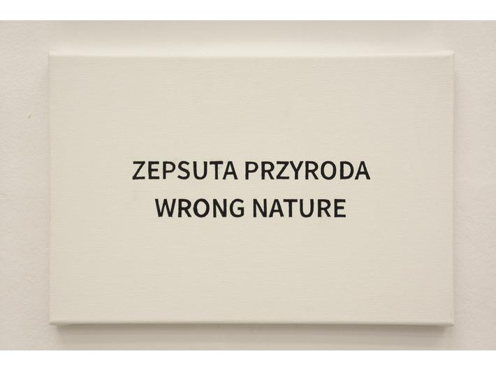Aleksandra Polerowicz, //Martwa natura//, 2016–2017, 20 × 30 cm, courtesy A. Polerowicz