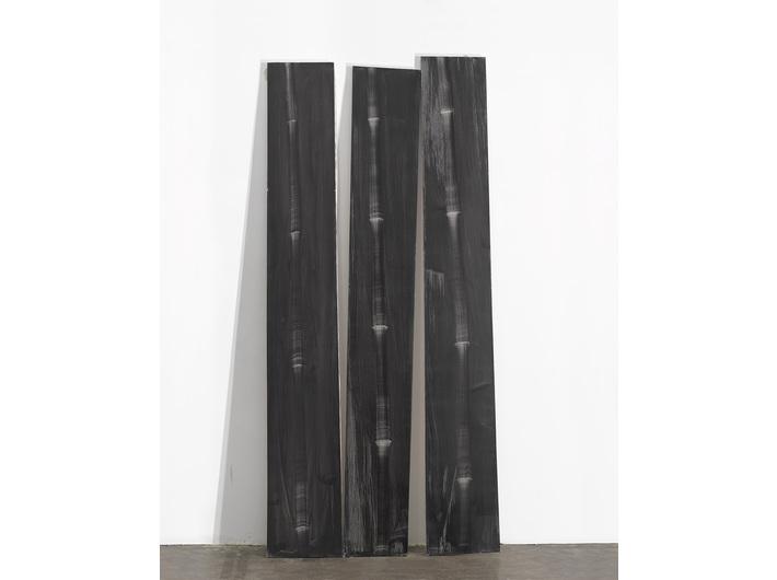 Rafał Bujnowski, //Bambus// (1–3), 2012, olej / płótno, 234,5 × 33,5 cm, 232,5 × 31,5 cm, 238 × 32,5 cm, courtesy Galeria Raster, Warszawa