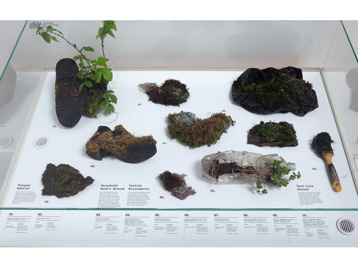 Wystawa // Nagroda Fundacji Vordemberge-Gildewart 2018//. Diana Lelonek, //Center for Living Things//, 2016–2018, instalacja, 100 × 120 × 80 cm, courtesy D. Lelonek, fot. R. Sosin