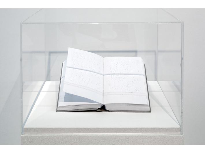 Wystawa //Gra w murach Akademii//. Kęstutis Montvydas, //Idiot//, 2014, obiekt, 20,6 × 12,5 × 4,2 cm, courtesy K. Montvydas, fot. R. Sosin