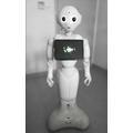 Robot Pepper, fot. M. Nikody841