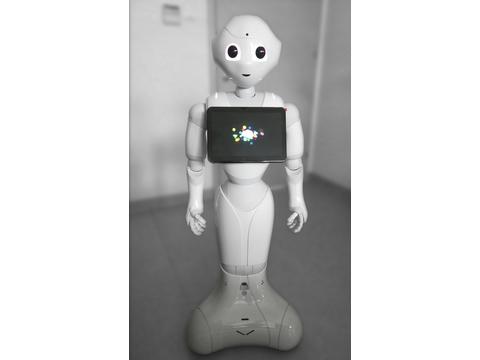 Robot Pepper, fot. M. Nikody