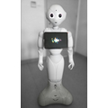 Pepper the Robot, photo: M. Nikody653