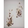 Akira Inumaru, //Ignis fatuus// (//Błędne ogniki//), 2013, kwiaty / papier, 109,5 x 79 cm, Kolekcja MOCAK-u, fot. R. Sosin864