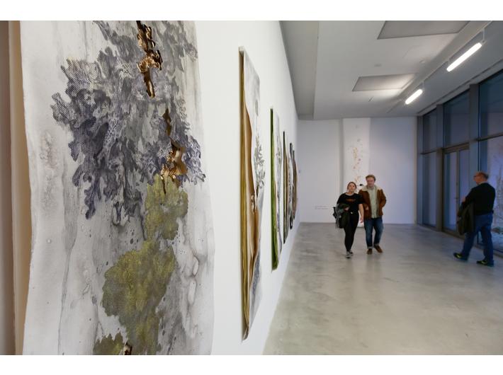 Widok wystawy Akiry Inumaru //Język kwiatów//, fot. R. Sosin