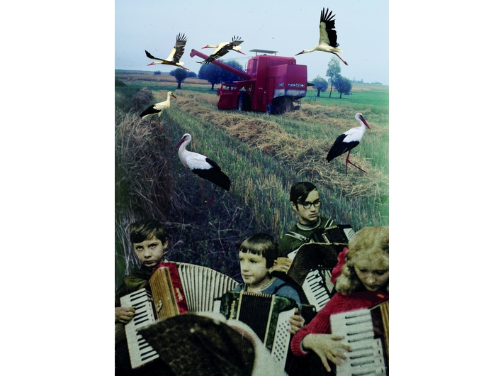 Alicja Biała, //Storks//, 2018, collage, 41 × 29 cm, courtesy of A. Biała