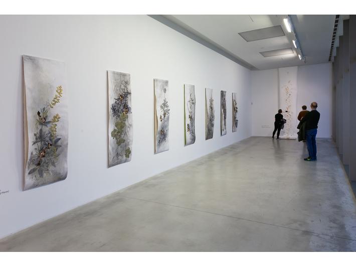 Widok wystawy //Język kwiatów//, fot. R. Sosin