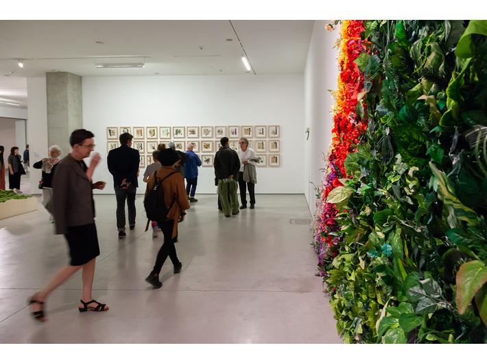 Wystawa //Natura w sztuce//. Na pierwszym planie: Grzegorz Kozera, //Cud łomu//, 2016/2019, instalacja, courtesy G. Kozera. W tle praca Daniela Spoerriego, fot. R. Sosin