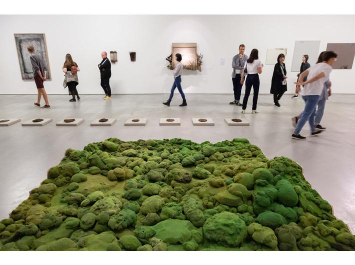Exhibition //Nature in Art//. Foreground: Michalina Bigaj, untitled, 2016, object, courtesy of M. Bigaj. Background works by: Oskar Dawicki, Witek Orski, Bartosz Kokosiński, photo: R. Sosin