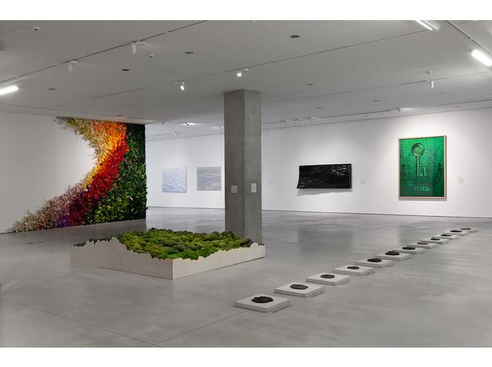//Nature in Art// Exhibition. From the left works by: Grzegorz Kozera, Michalina Bigaj, Oskar Dawicki. Background works by: Jan Fabre, Justyna Smoleń, Guido Casaretto. Photo: R. Sosin