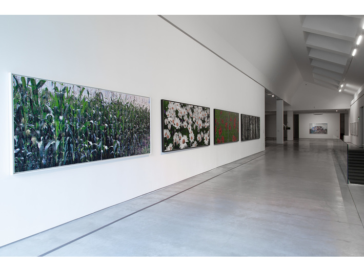 //Nature in Art// exhibition. Works by Azade Köker, photo: R. Sosin
