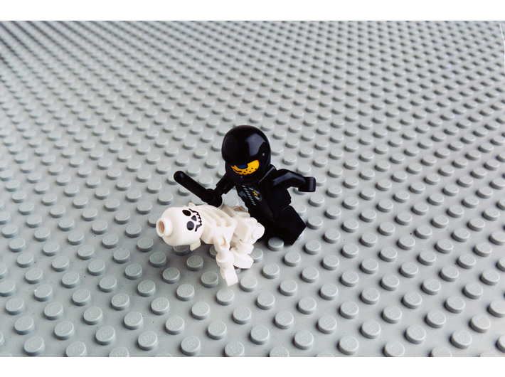 Zbigniew Libera, //KZL LEGO//, 1996, fotografia barwna, Kolekcja MOCAK-u
