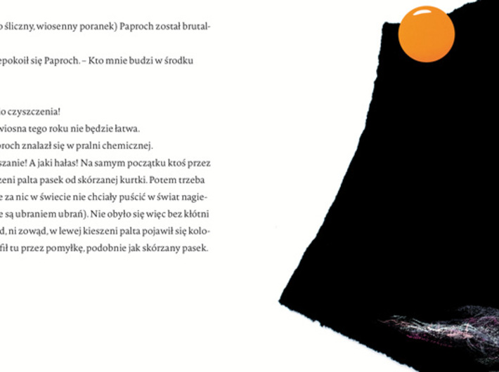 E. Piotrowska, //Paproch//[Crumb], illustrated by M. Ekier, Hokus-Pokus, Warsaw 2010