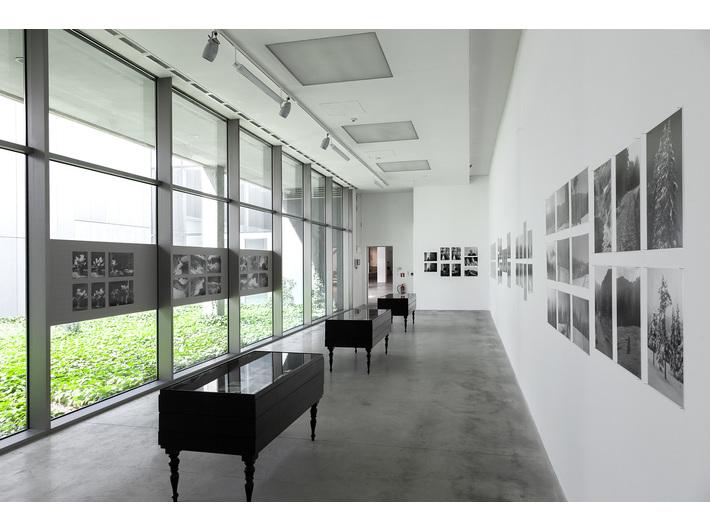 Wystawa fotograficzna Romana Ingardena //Filozof i fotograf//, fot. R. Sosin