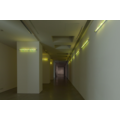 Karolina Kowalska, //Neon Light Shades//, 2005, object, 120 cm, MOCAK Collection881