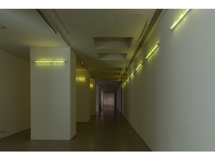 Karolina Kowalska, //Neon Light Shades//, 2005, object, 120 cm, MOCAK Collection