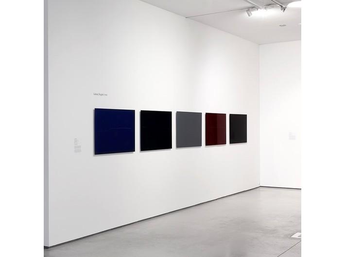 Prace Łukasza Skąpskiego, lakier samochodowy / blacha, 70 × 120 cm, Kolekcja MOCAK-u