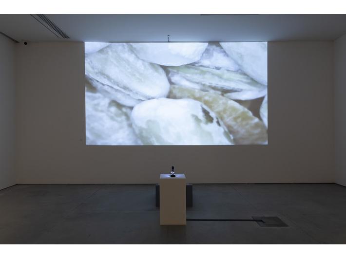Marek Chołoniewski, //Entropia//, 2019, instalacja audiowizualna, wymiary zmienne, courtesy M. Chołoniewski, fot. R. Sosin