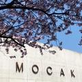 Photo: Promotion Department, MOCAK1