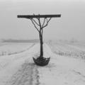 //Thanatos polski// sfotografowany w miejscu powstania, 1984, własność Muzeum Narodowego we Wrocławiu, fot. K.M. Bednarski5