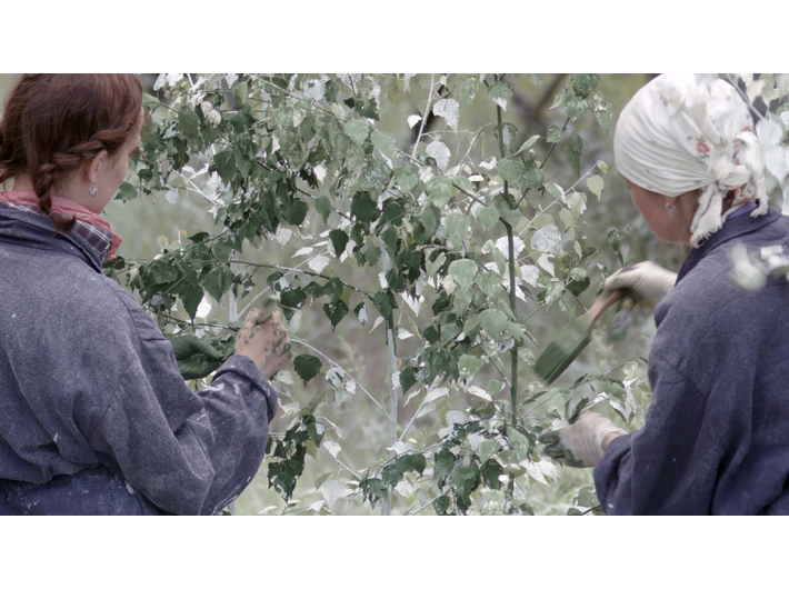 Julius von Bismarck, //Landscape Painting (Forest)//, 2016, video, 19 min 40 s, MOCAK Collection, The purchase of the work was co-financed by the Minister of Culture, National Heritage and Sport from the Cultural Promotion Fund