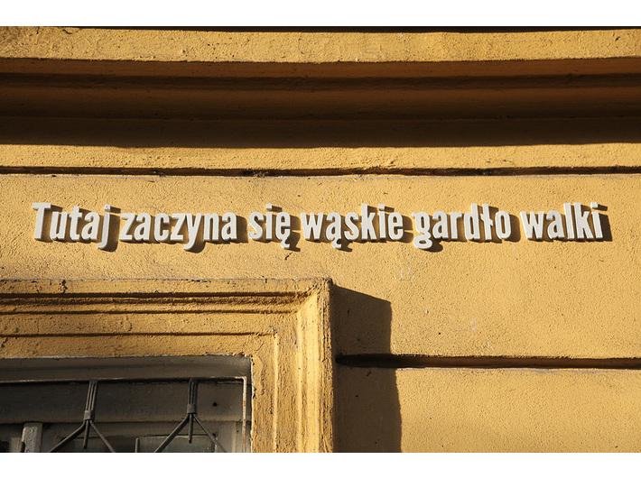 Antonina Dylik, Anna Pietrzak, Karolina Spyrka //Po co jest sztuka?//, 2012