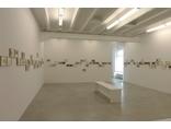 Joanna Rajkowska, //Born in Berlin//, widok wystawy w galerii Żak Branicka, 20123